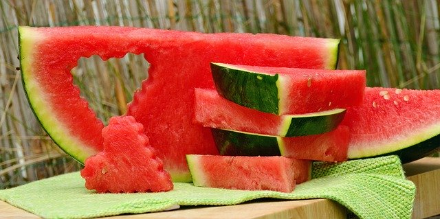can-cats-have-watermelon